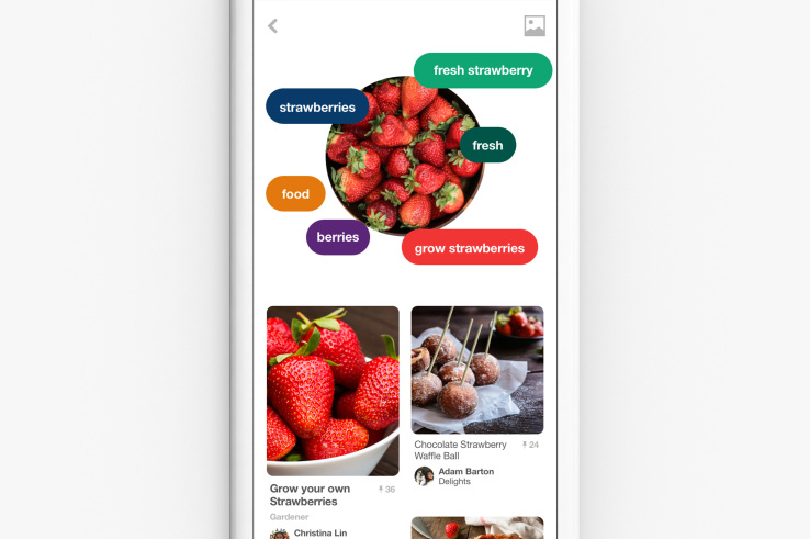 pinterest live camera search