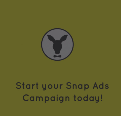 snapchat ads campaign